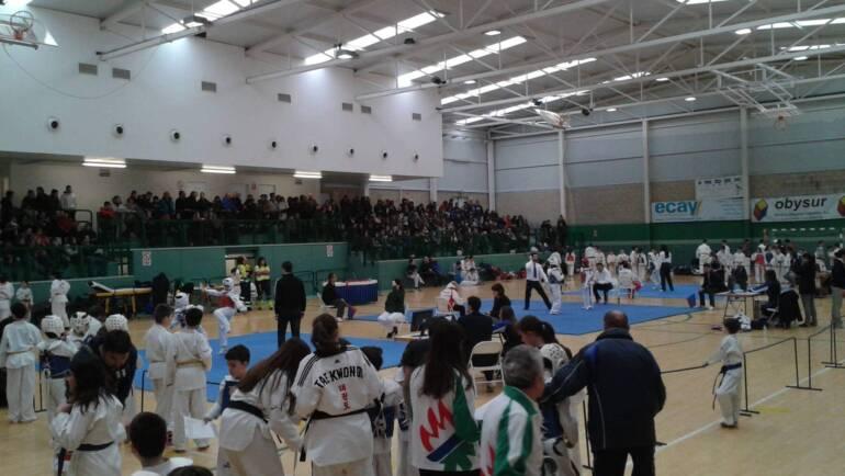 1ª Jornada III Liga de Taekwondo AEDONA